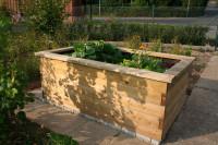 Garten-Hochbeet 200 x 120 x 76 cm