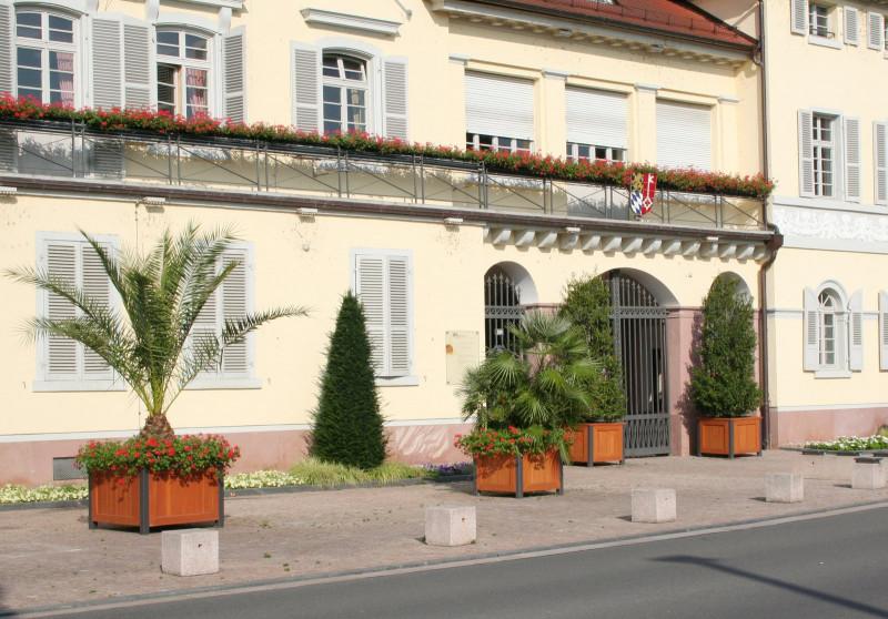 media/image/Pflanzcontainer-Schloss-Neckarhausen_09.jpg